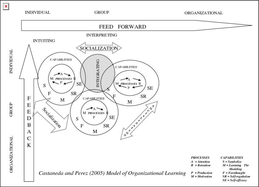 Castaneda and Perez' (2005) extended model of