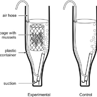 (PDF) Effects of suspended inorganic matter on filtration