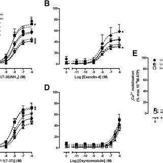 Characterization of the interaction between quercetin and