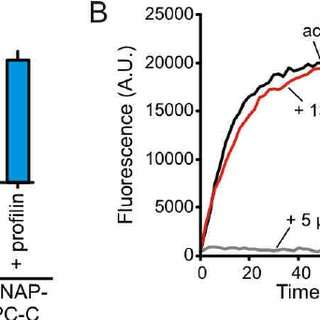 Fig. S1: Activity and Multimerization of SNAP-647-APC-C