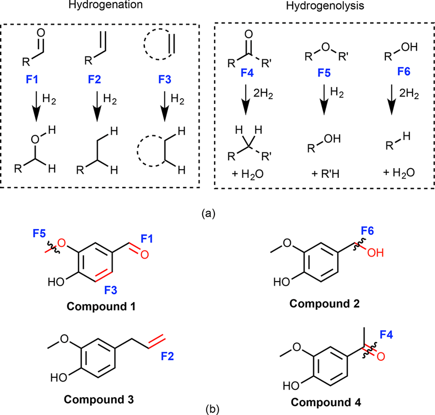 Scheme 1. (a) Six Functional Groups for the Quantum