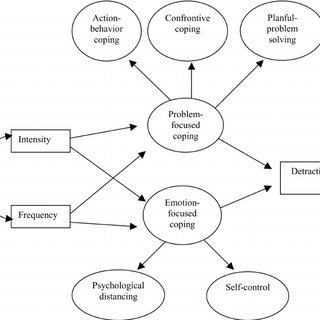 Transactional Stress/Coping Model Used to Guide the