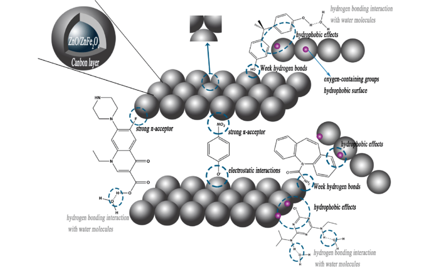 The schematic illustration of adsorption mechanism