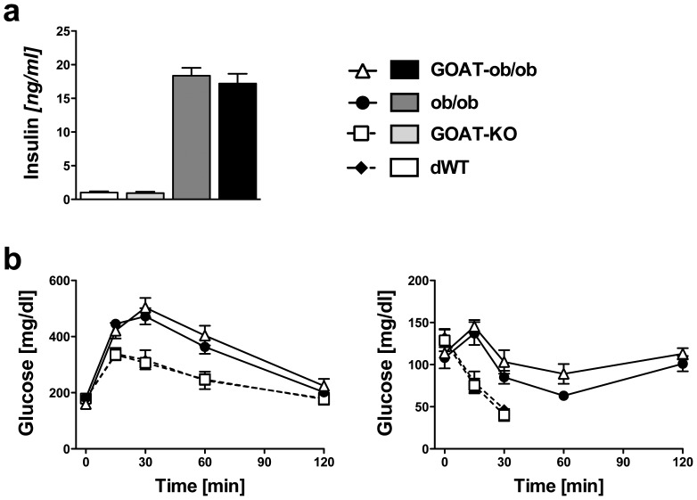 a) Fasting insulin levels in 4-month-old chow-fed WT, GOAT