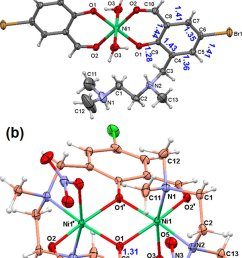 a molecular structure and atom numbering schemes of mononuclear nickel complex 3 counter [ 850 x 1344 Pixel ]