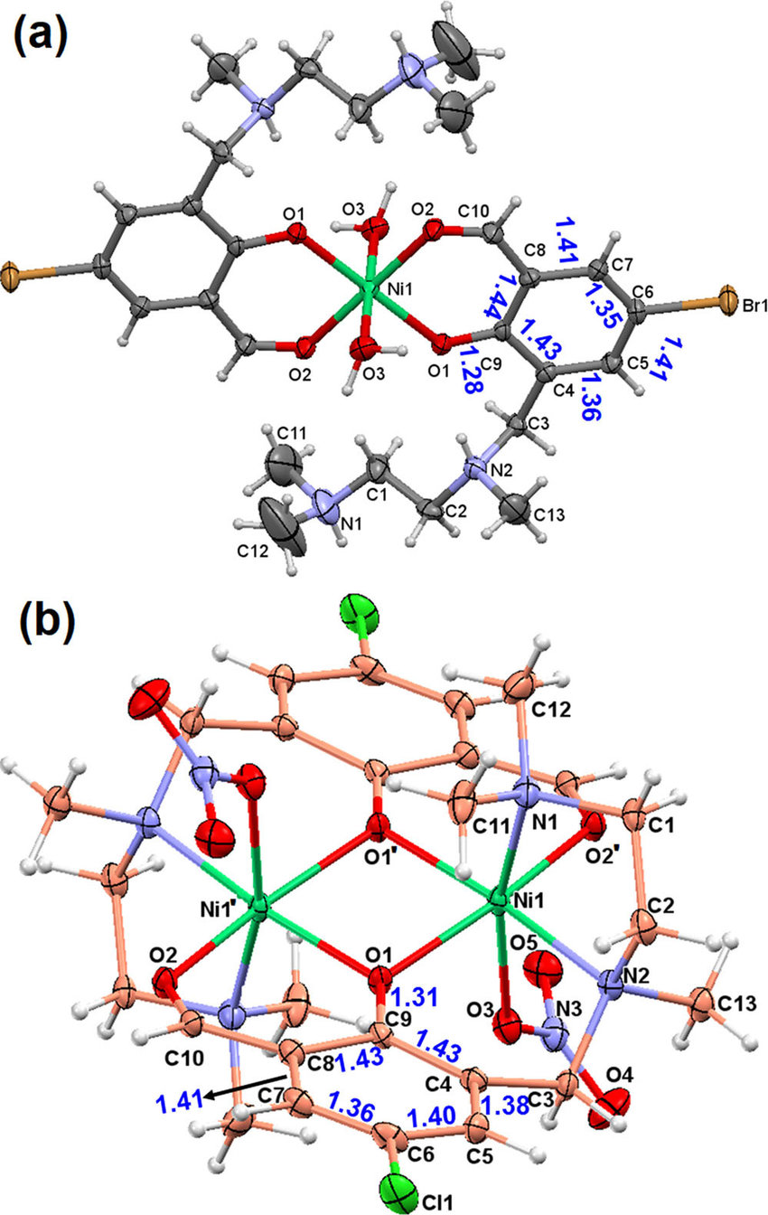 hight resolution of a molecular structure and atom numbering schemes of mononuclear nickel complex 3 counter