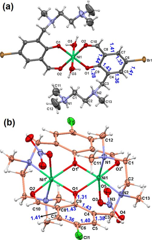 small resolution of a molecular structure and atom numbering schemes of mononuclear nickel complex 3 counter