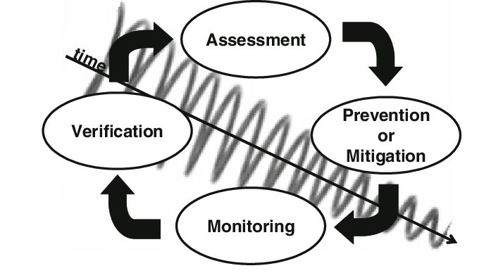 Cyclic process of risk assessment and management during