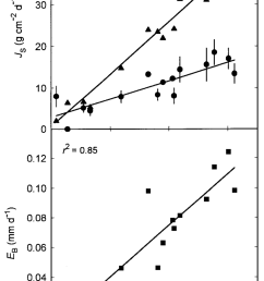 daily sap flux j s values for one individual of acer rubrum and download scientific diagram [ 850 x 1513 Pixel ]