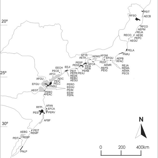 (PDF) Coastal plain forests in southern and southeastern