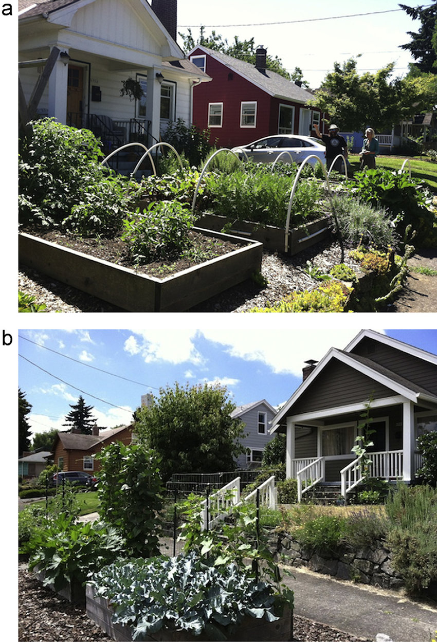 medium resolution of raised garden beds in a front yard a and on the right of