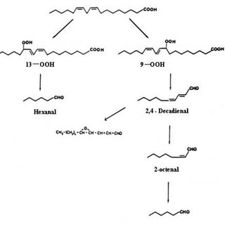 (PDF) Flavour Chemistry of Chicken Meat: A Review