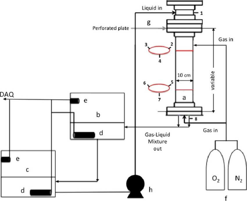 Schematic of the reactor design: (a) bubble column, (b