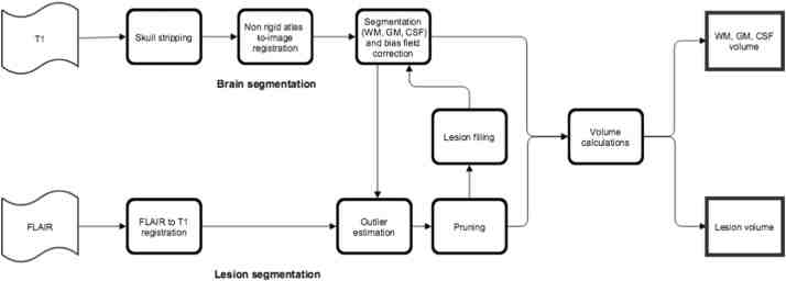Schematic representation of the MSmetrix method
