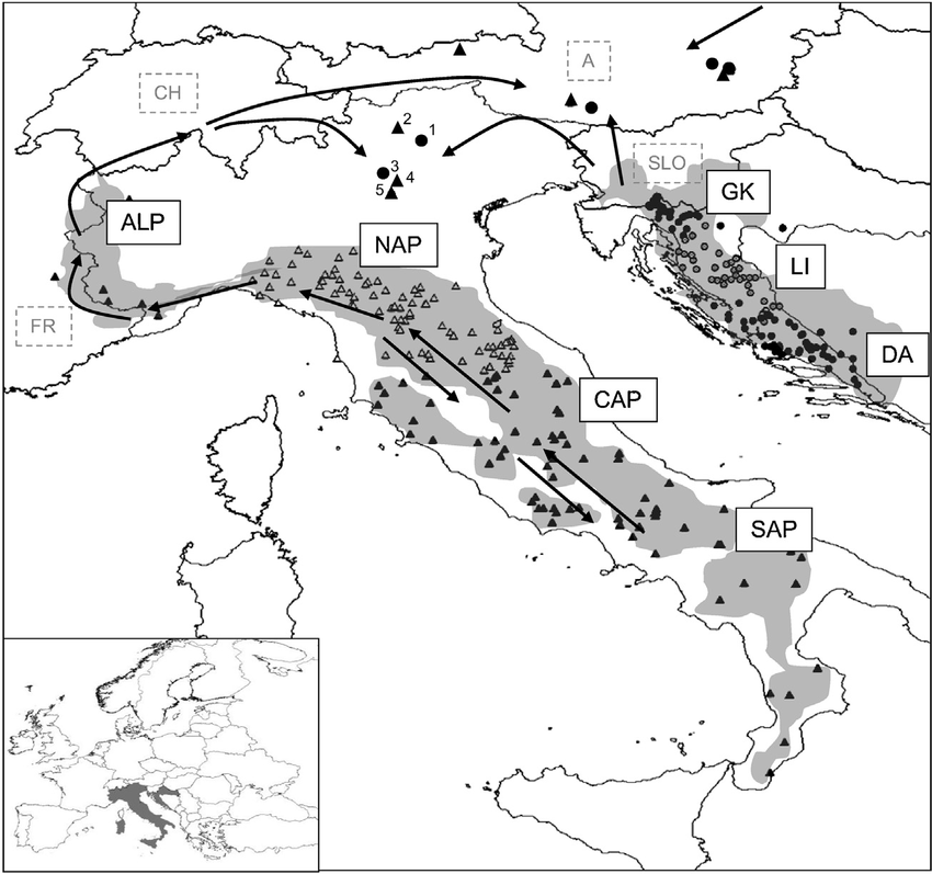 Approximate distribution range (shaded areas) and sampling