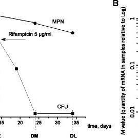 (PDF) Dormant non-culturable Mycobacterium tuberculosis