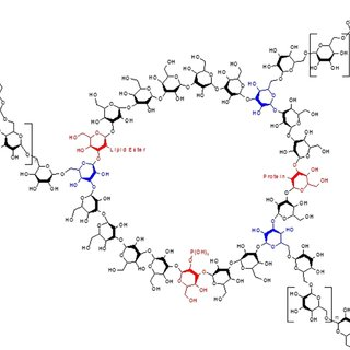 Comparison of HSQC two-dimensional NMR spectra of the