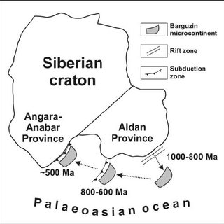 Precambrian microcontinents and early Palaeozoic