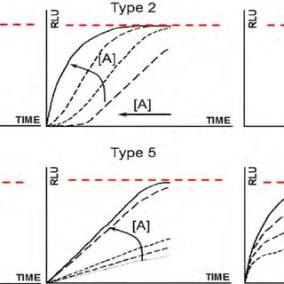 The principle of HIF1 ODD-luc reporter performance (left