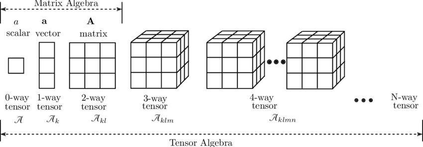 Tensors as generalizations of scalars, vectors and