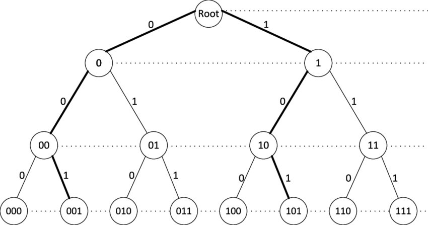 The full binary tree of depth m (the root is at level 0