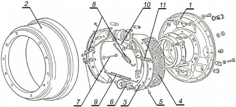 Main parts of rear drum brakes: 1