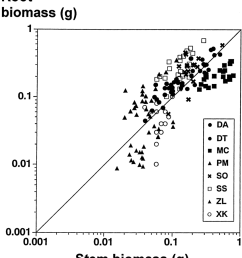log log plot of root dry mass against stem dry mass for seedlings of eight [ 850 x 978 Pixel ]
