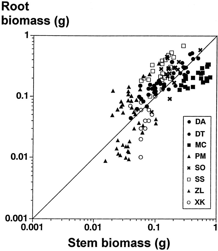 hight resolution of log log plot of root dry mass against stem dry mass for seedlings of eight