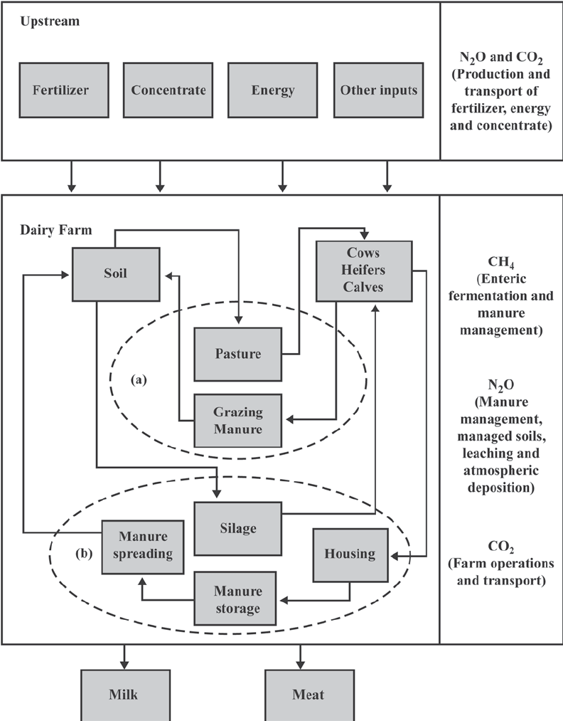 hight resolution of a flowchart of a pastoral dairy farming system and associated download scientific diagram