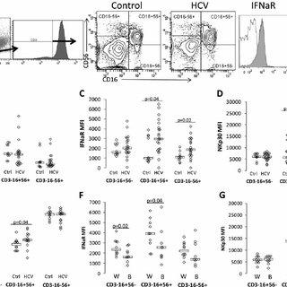 (PDF) Genetically Associated CD16(+)56(-) Natural Killer