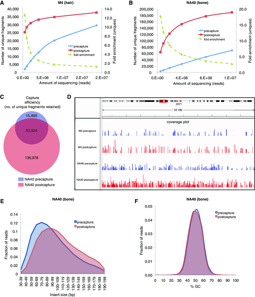 medium resolution of results of increased sequencing of samples m4 and na40 a yield of download scientific diagram