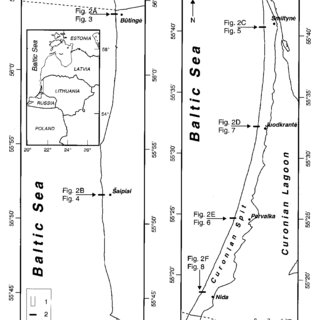 (PDF) The influence of coastal morphology on wind dynamics