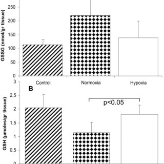 Effect of normoxic and hypoxic reperfusion on glutathione
