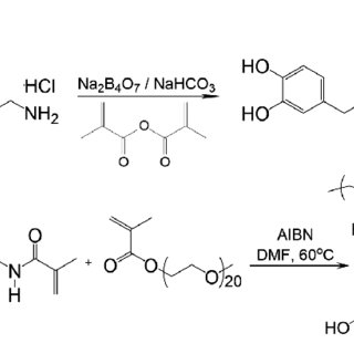 (PDF) Synthesis and Characterization of Catechol