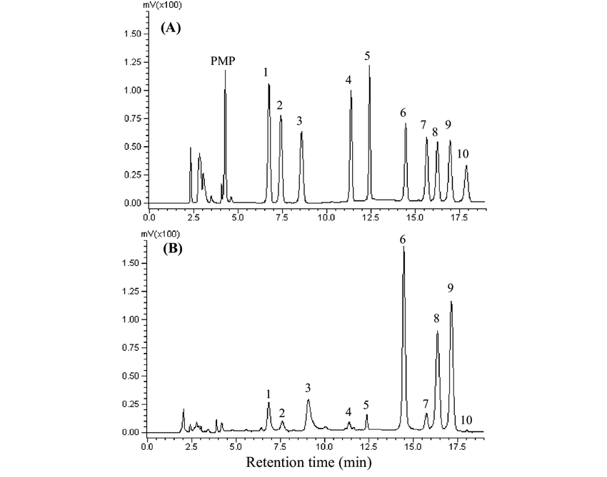 The HPLC chromatograms of PMP derivatives of 10 standard