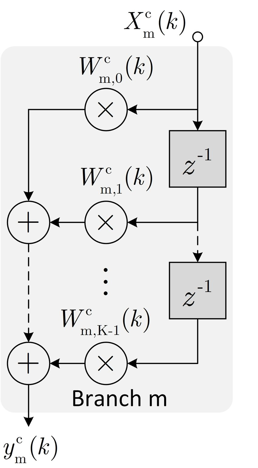 Block diagram of the mth branch in FxCFDAF algorithm
