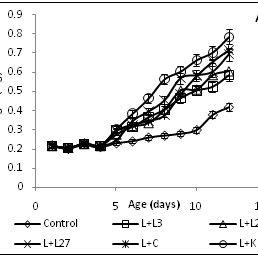 (PDF) Probiotic Effect of Lactobacillus, Leuconostoc and
