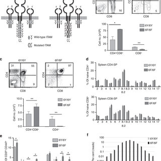 TCR-mediated signalling responses in 6F/6F mice. (a