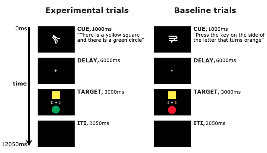 Timeline of experimental (left) and baseline (right