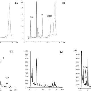 Electropherogram and chromatograms of a plasma sample