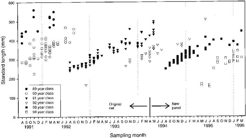 plot of fish lengths