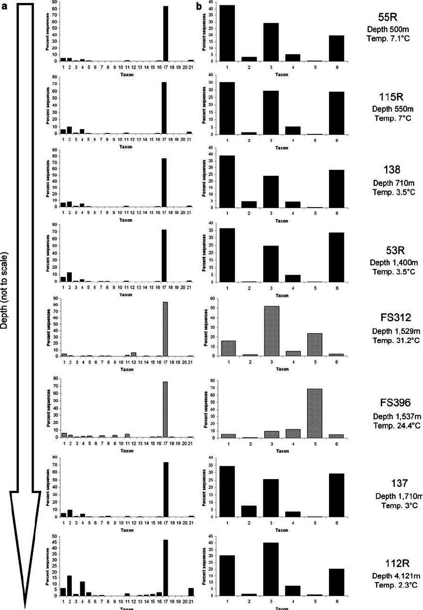 medium resolution of classification of the v6 region rrna tags produced by sogin et al 2006