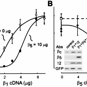 (PDF) Activation and inhibition of G protein-coupled