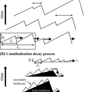 (PDF) Origin of Hysteresis in Bed Form Response to