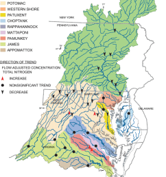trends in flow adjusted concentrations for total nitrogen chesapeake bay watershed 1985  [ 850 x 1107 Pixel ]