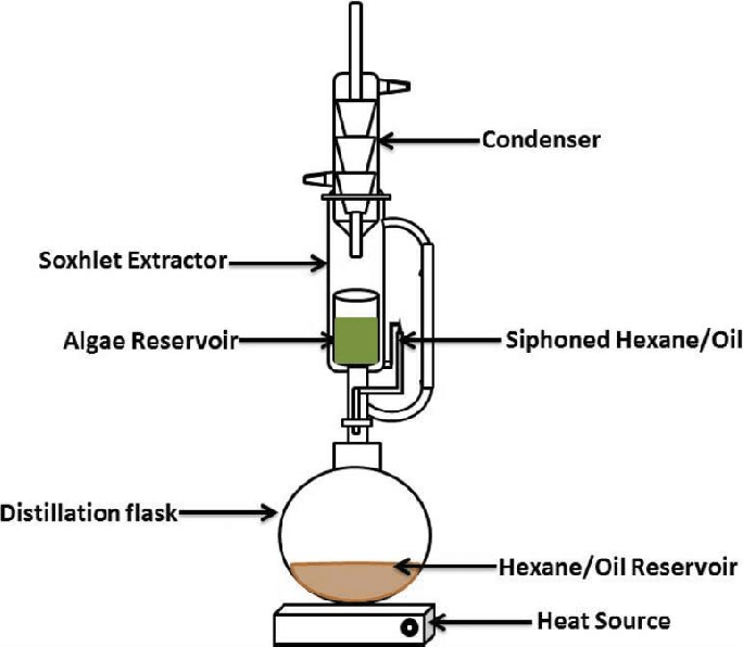 Soxhlet extraction set up for the algae oil extraction