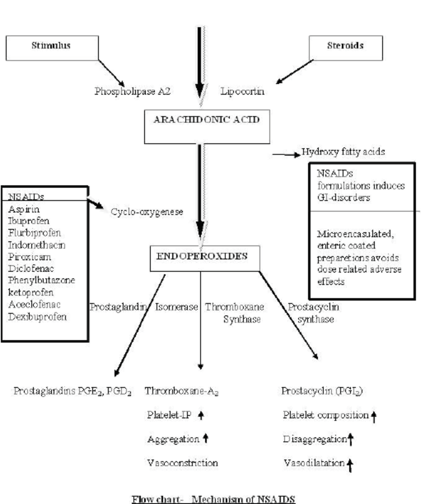 medium resolution of flowchart showing the mechanism of action of nsaids download scientific diagram