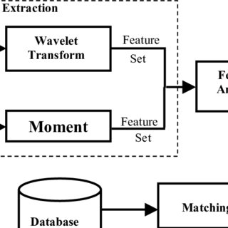 (PDF) Fingerprint Recognition Technique using Wavelet