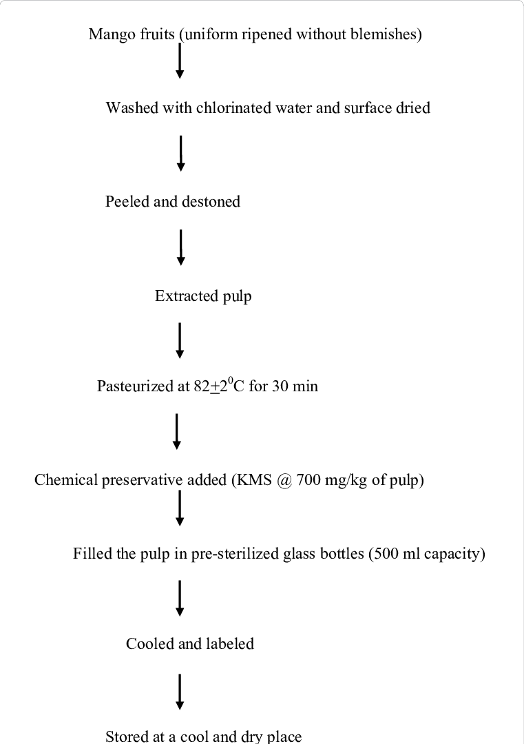 hight resolution of process flow chart for extraction of mango pulp