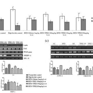 (PDF) Evaluation of anti-obesity activities of ethanolic
